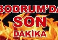 SON DAKKA int