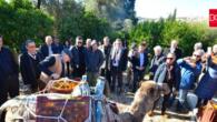 Rant Arttıkça Mandalina Bahçelerini Korumak Zorlaşıyor…