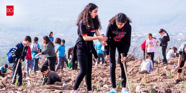 Bodrum'da 5 Bin Öğrenci 20 Bin Fidan Dikti…