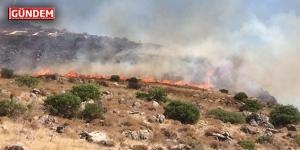 Bodrum Turgutreis Makilik Yangını
